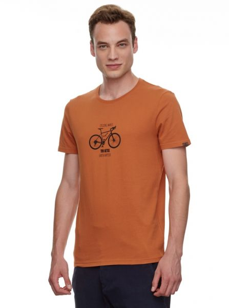 RAGWEAR - SIRIL ORGANIC T- Shirt cinnamon