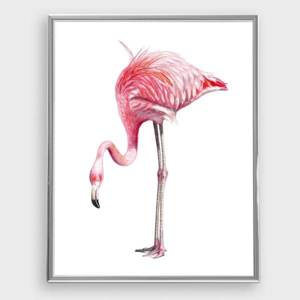 JANINE SOMMER - FLAMINGO Zeichnung Poster Kunstdruck A4