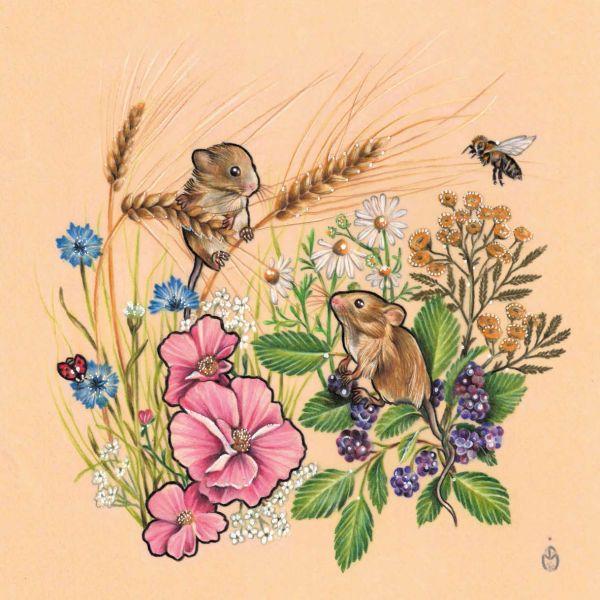 JESSICA MACH- Mäuse im Sommer