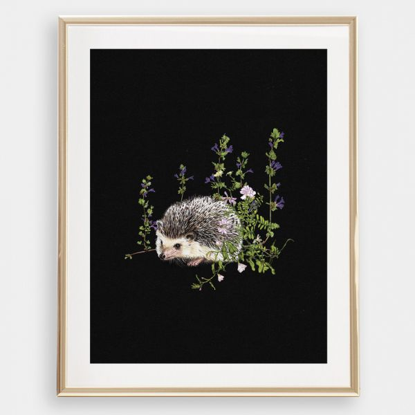 JANINE SOMMER - IGEL IM WALD Zeichnung, Poster, Kunstdruck A4