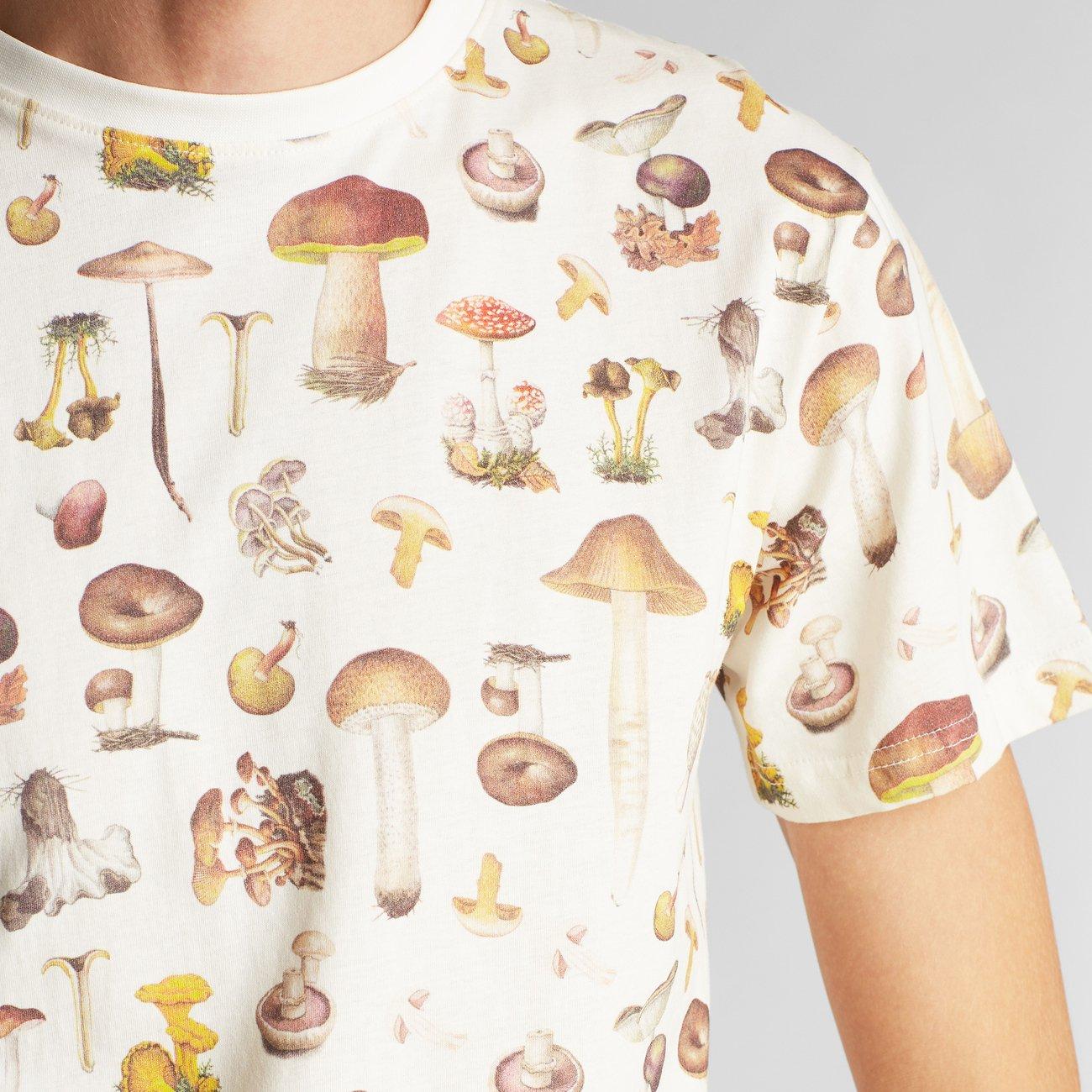 Dedicated-Stockholm-Mushrooms1