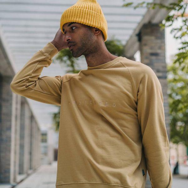 DEDICATED - SPREAD LOGO Sweatshirt beige