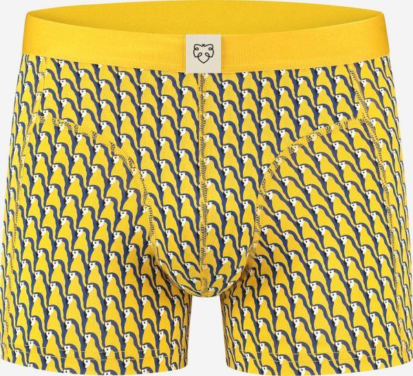A-DAM - PARRY Boxerbriefs yellow
