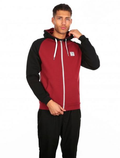 IRIE DAILY - DE COLLEGE Sweatjacke earth red