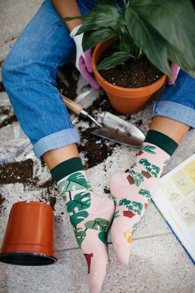 MANY MORNINGS - PLANT LOVER Motivsocken 35 - 42