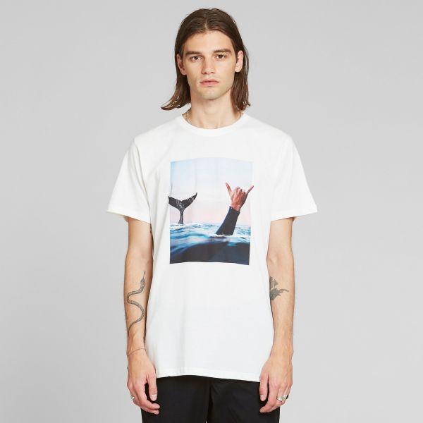 DEDICATED - WHALE SHAKA Stockholm Shirt Off-White