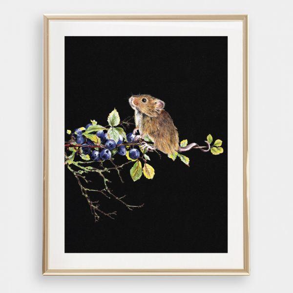 JANINE SOMMER -MAUS MIT BLAUBEEREN Zeichnung, Poster, Kunstdruck A4