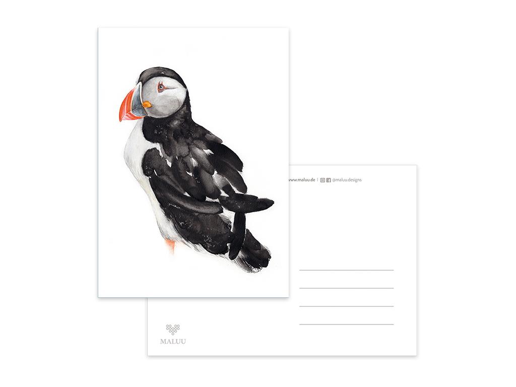 MALUU_Postkarte_Puffin